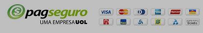 Nossos pagamentos são feitos pelo pagseguro. Aceitamos diversos cartões de crédito, débito online e boletos bancários.