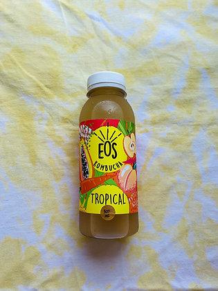 Kombucha Tropical - EOS KOMBUCHA