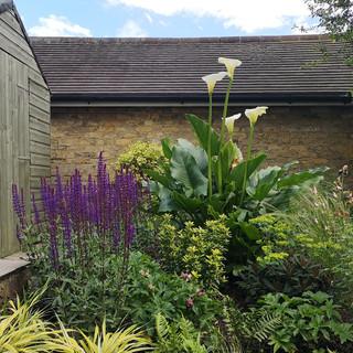 Family Garden, London, NW11 »