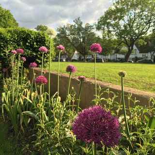 Large Family Garden, Finchley, N3 »