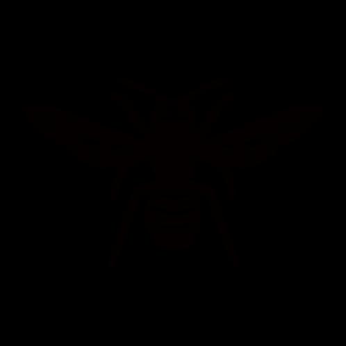 S002【蜂B】