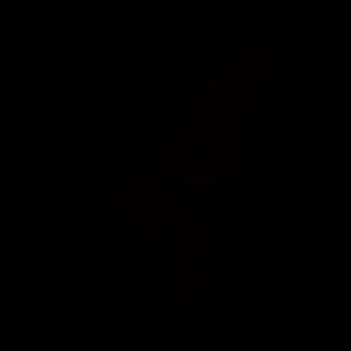 S001【蜂A】