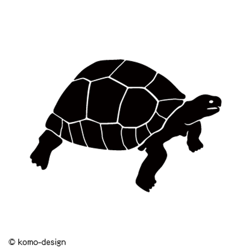 A011【リクガメ】
