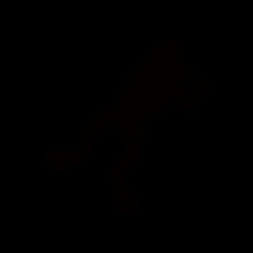A026【カエルC】