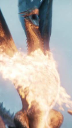 Dragon Lvl Up Video