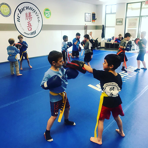 4 Months - Unlimited Classes | KIDS SAMURAI Program - CALL FOR PRICE