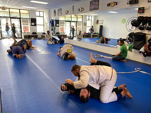 MONTH TO MONTH | Adult BJJ Program