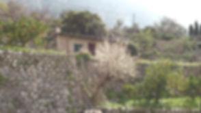Mallorca_edited.jpg