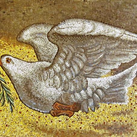 La colombe de la paix (sociale).