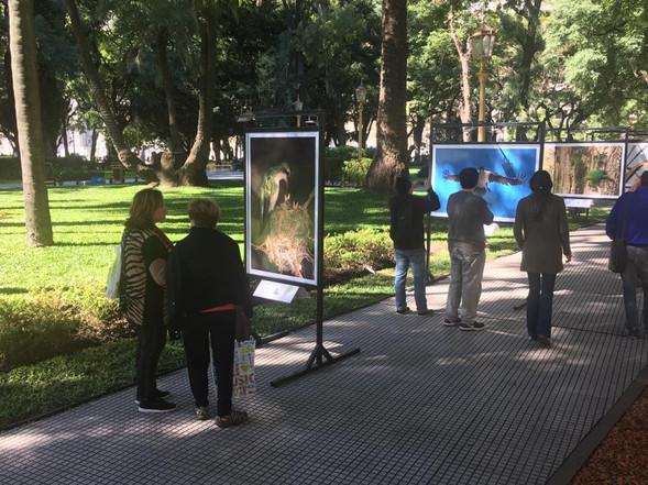 Plaza San Martín, Buenos Aires