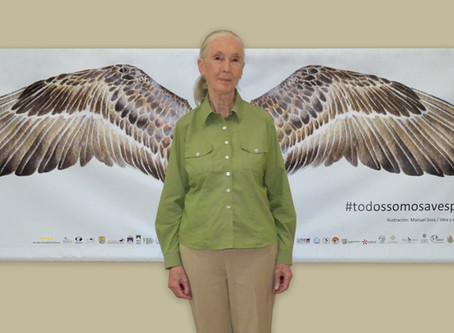Jane Goodall incluida entre las 100 personas más influyentes del mundo.