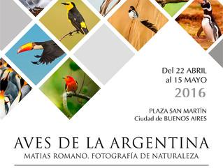 Exposición Aves de la Argentina