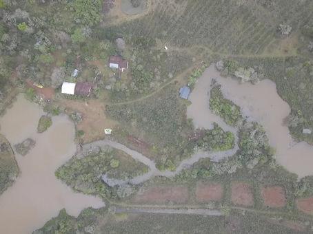 Recuperando la Selva Misionera