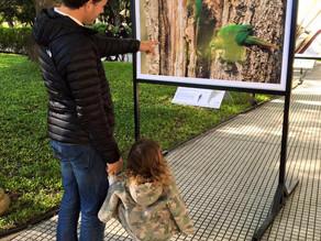 """Apertura Exposición """"Aves de la Argentina"""""""