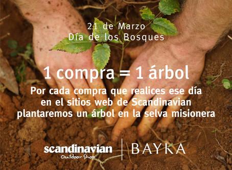 Día Mundial de los Bosques junto a Scandinavian
