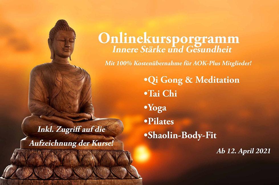 Online-Kurs-Programm