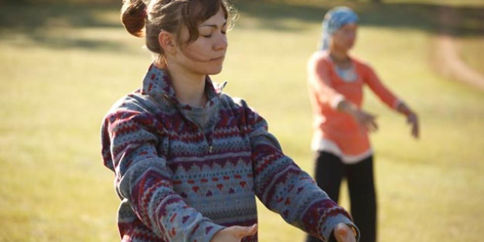 Qi Gong Trainer Ausbildung 2021/22