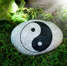 Qi Gong & Meditation