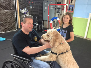 Train to Become a Pet Therapy Team