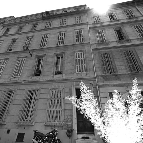 rue de la Bibliothèque