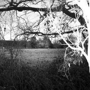 Le domaine des chênes
