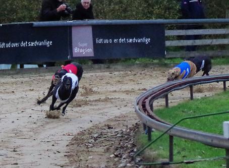 Dansk dubbel av ponnybarnen