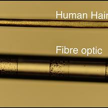 Fiber optic hair.png