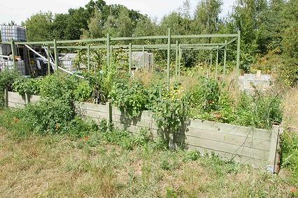 permaculture sol vivant