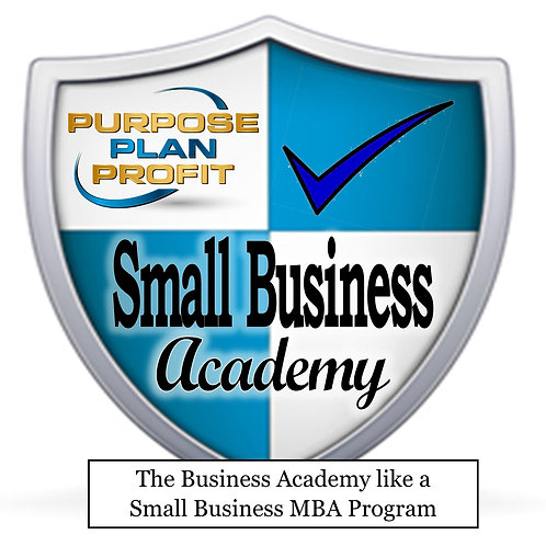 THE SMALL BUSINESS ACADEMY E-LEARNING MARKETING SYSTEM