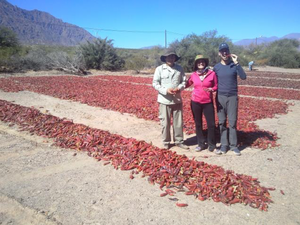 Community based tourism in Valles Calchaquíes in Northern Argentina.