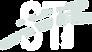 ST logo inverso.png