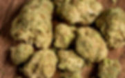 xx20190110-Leafly-WhiteWidow-0152-1024x6