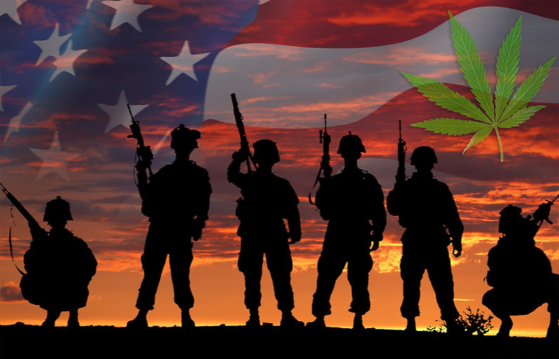 veteransleaf.jpg