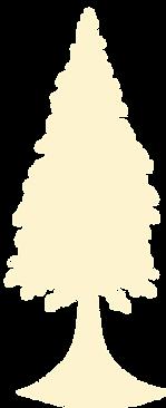 Cypress Hemp Tree solo logo off white.pn