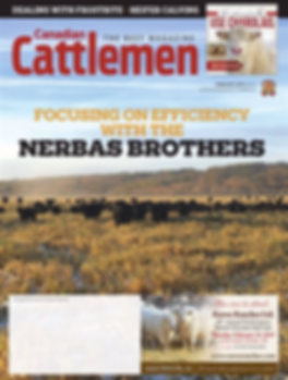 Cattlemen Feb 19.png