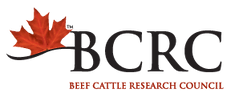 bcrc-logo.png