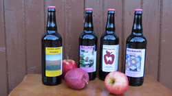 4 Ciders To Choose From