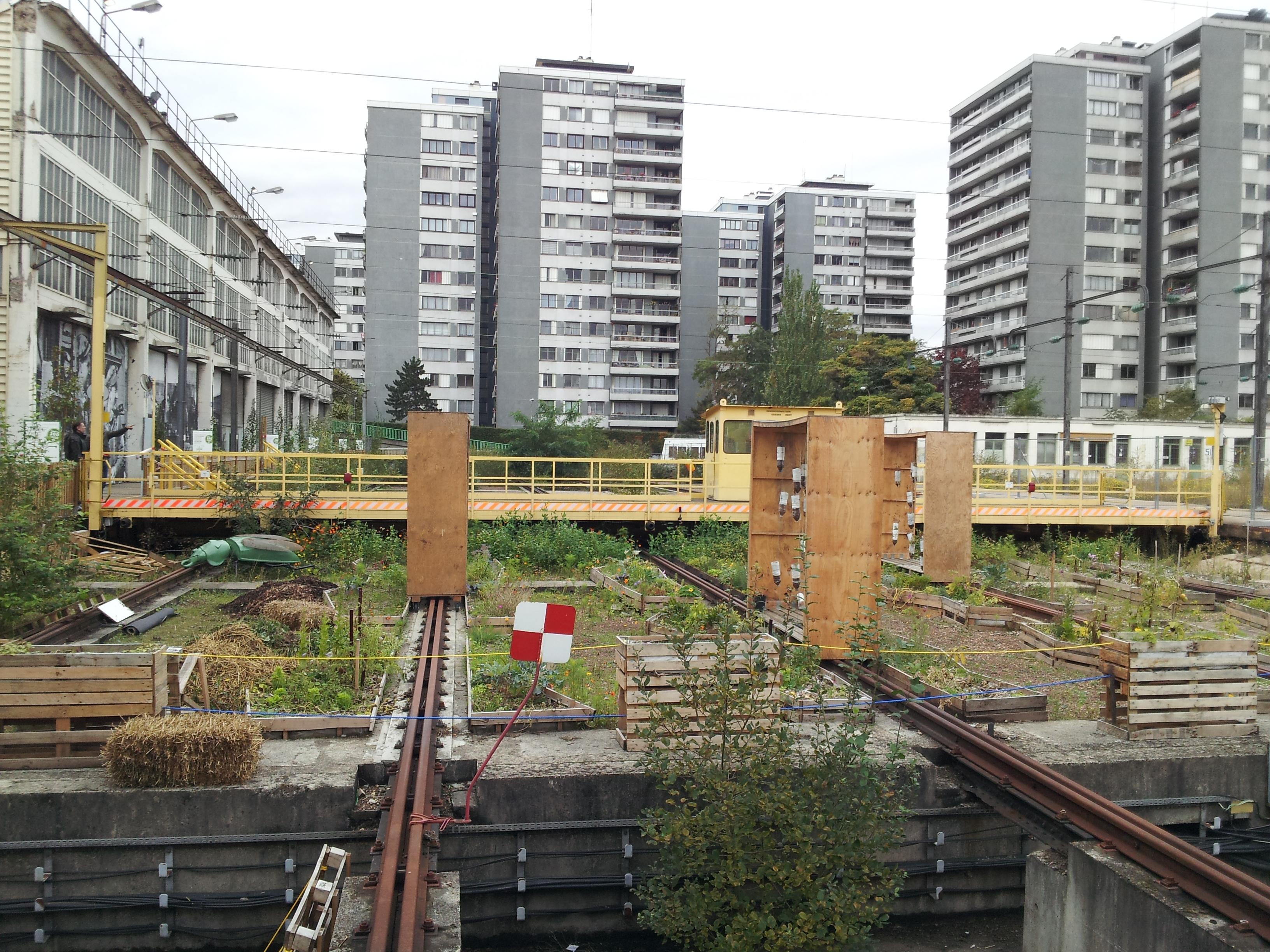 Agriculture_urbaine_Paris