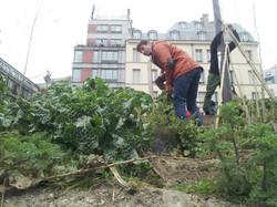 48h-agriculture-urbaine (7)