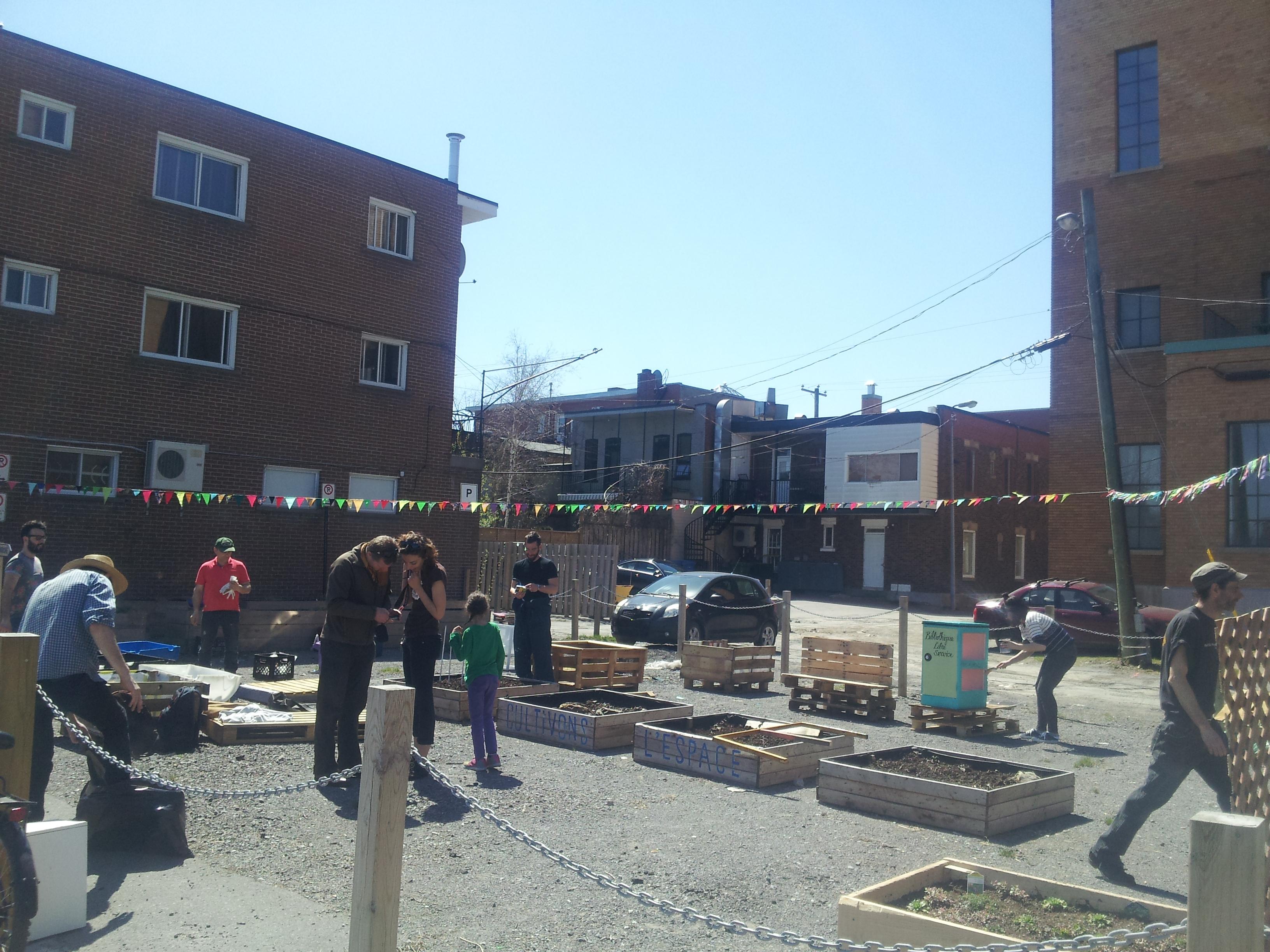 Jardin du marché-CBasilic