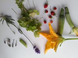 Récolte colorée