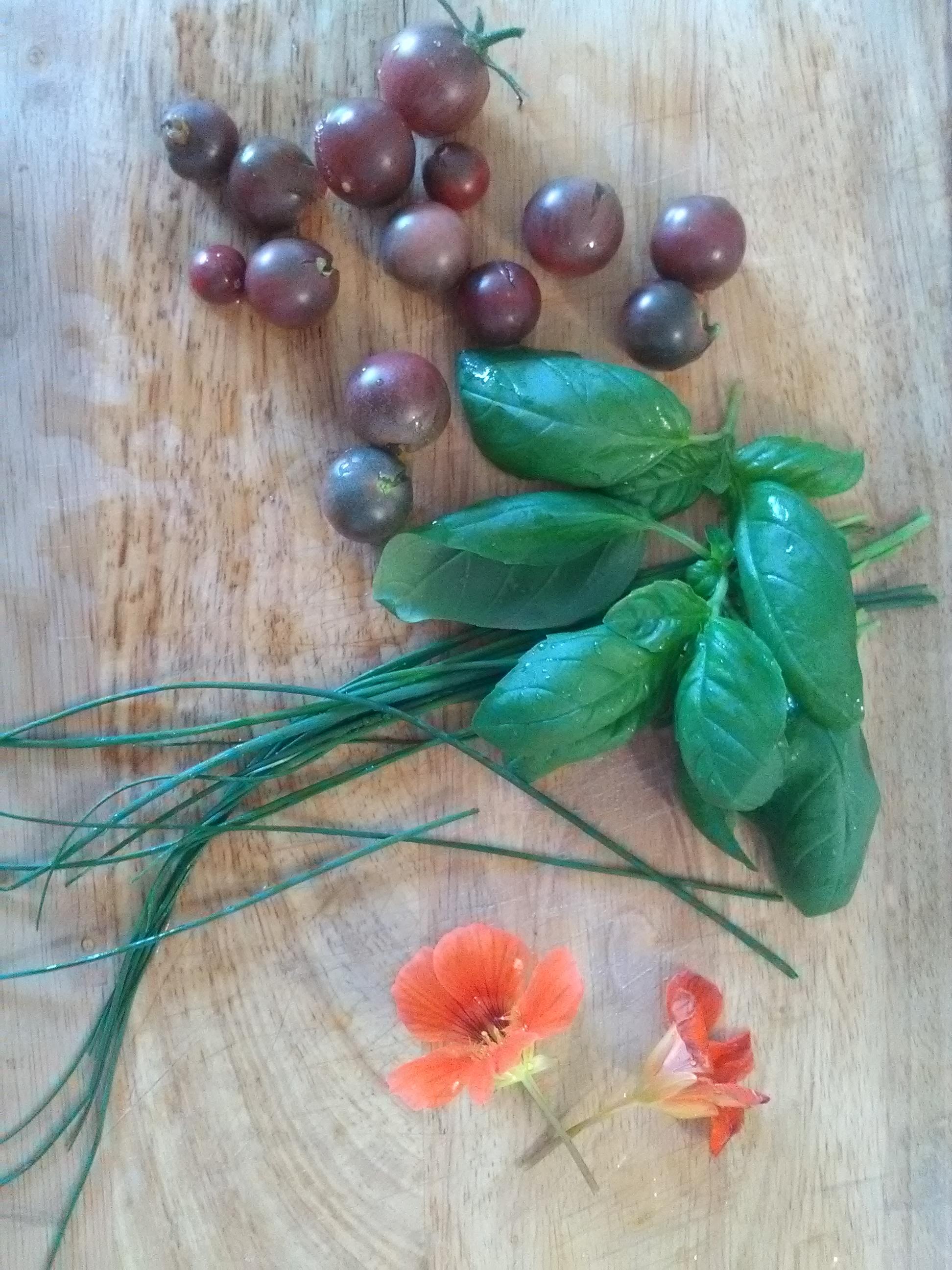 Cueillette Basilic Ciboulette Tomate