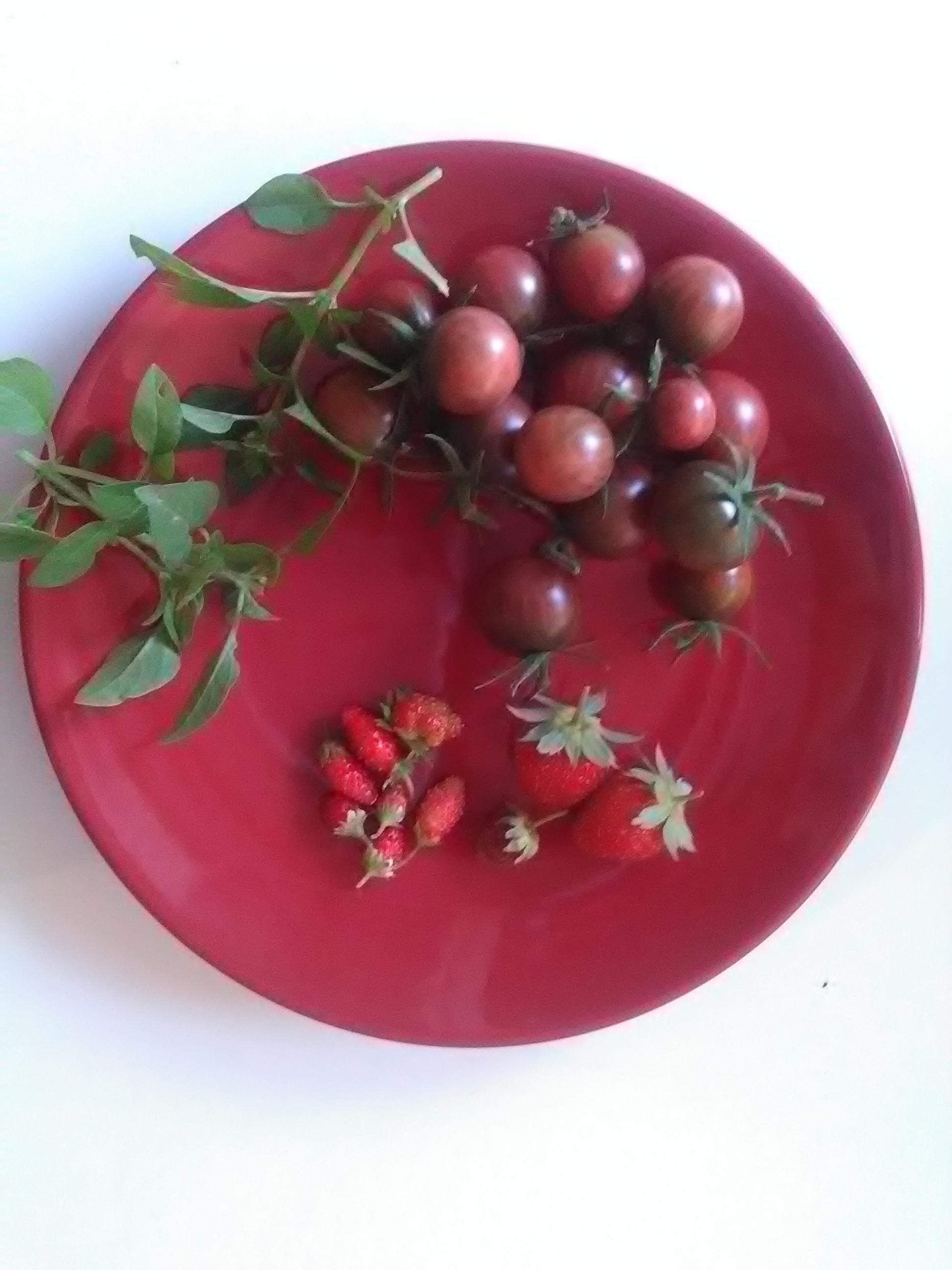 petite salade de tomates