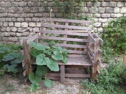 Ciné-Jardin Guinot