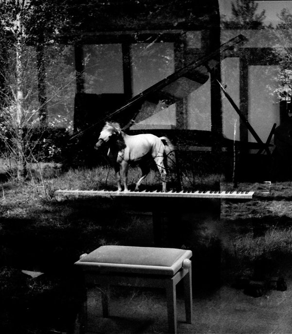 oeuvre artistique superposition d'images argentiques noir et blanc ventes tirages d'art danièle verjus toulouse