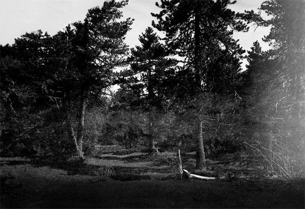 surimpression013copie copie.jpg oeuvre artistique superposition d'images argentiques noir et blanc ventes tirages d'art danièle verjus toulouse france