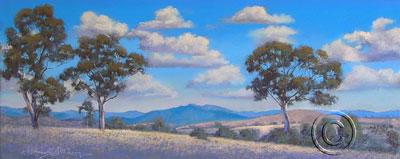 Brindabella Grassland
