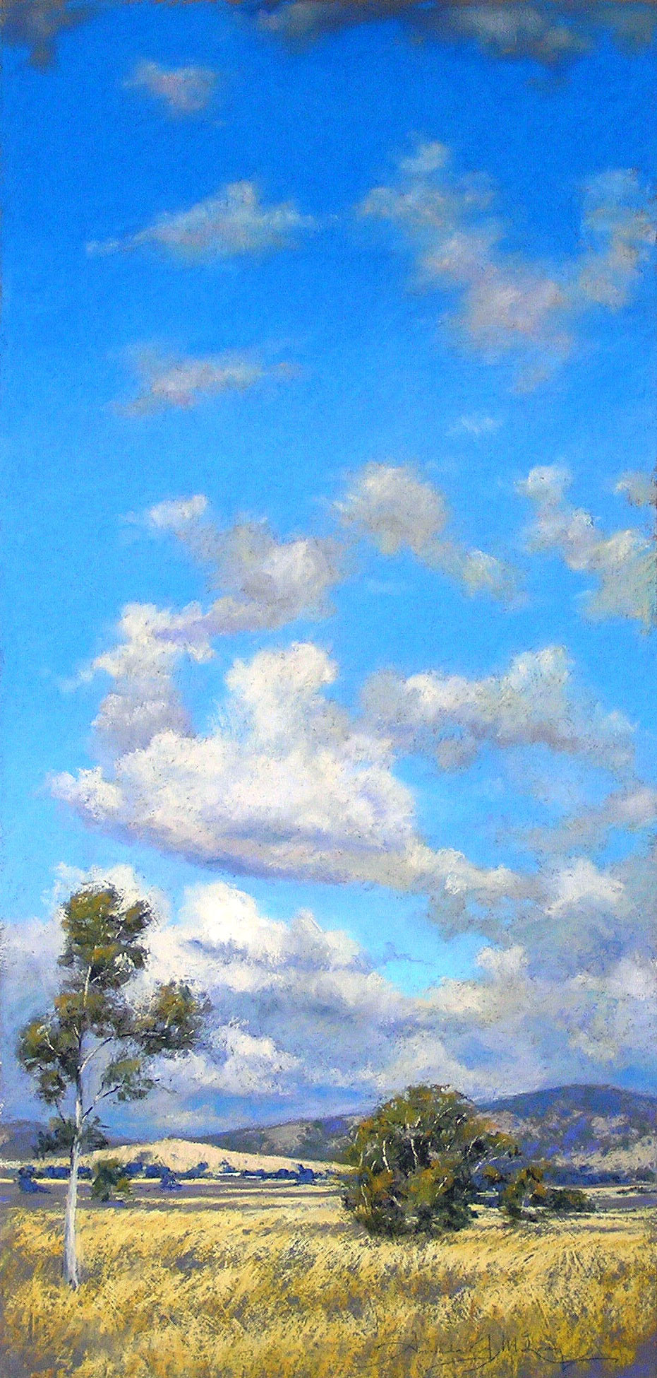 Cloudscape, Hall, ACT