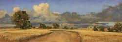 Road to the Storm, Murrumbateman