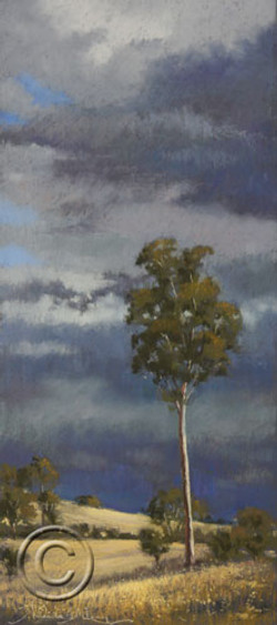 Approaching storm, Barton Highway